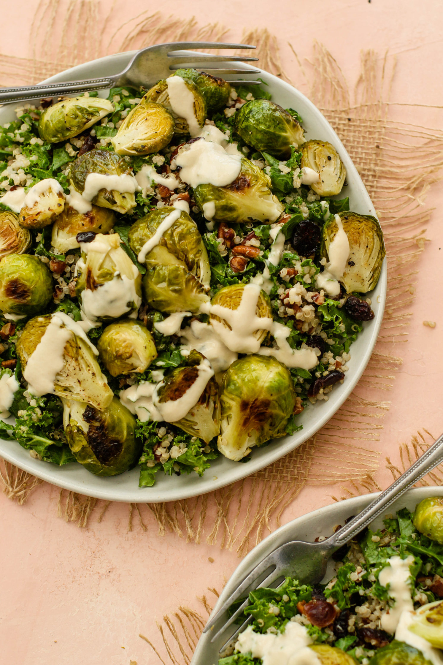 Cranberry Quinoa Brussel Sprout Salad with Apple Cider Tahini